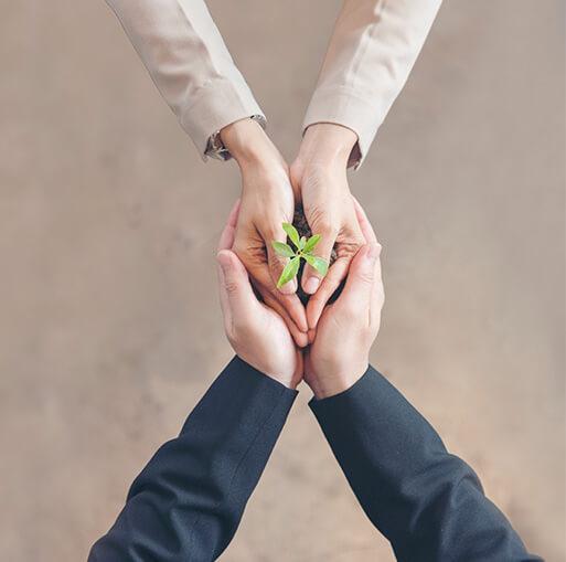 Sustainibility Image